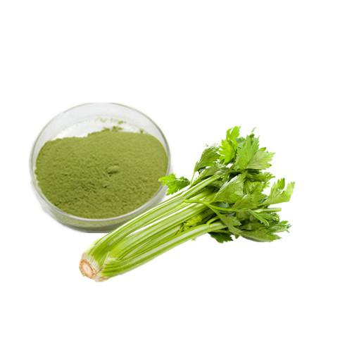Celery Powder Bulk Vegetable Powder Manufacturer and Supplier - Laybio Natural