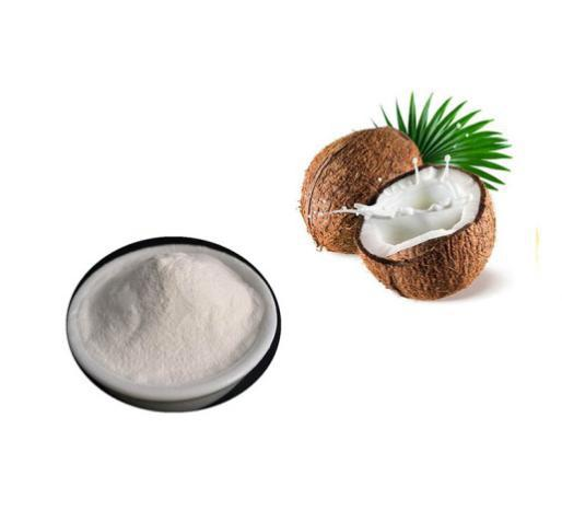 Coconut Milk Powder Bulk Fruit Juice Powder Manufacturer and Supplier - Laybio Natural