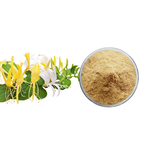 Honeysuckle Extract