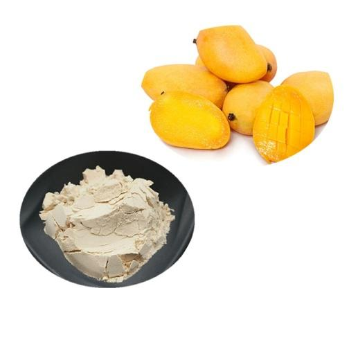 Mango Powder Bulk Fruit Juice Powder Manufacturer and Supplier - Laybio Natural