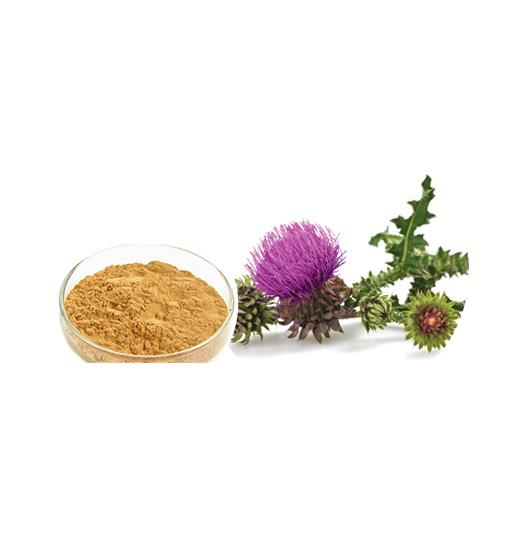 Milk Thistle Extract Bulk Herbal Extracts Manufacturer and Supplier - Laybio Natural