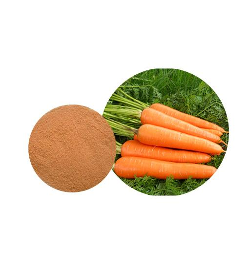 Organic Carrot Powder  Bulk Vegetable Powder Manufacturer and Supplier - Laybio Natural
