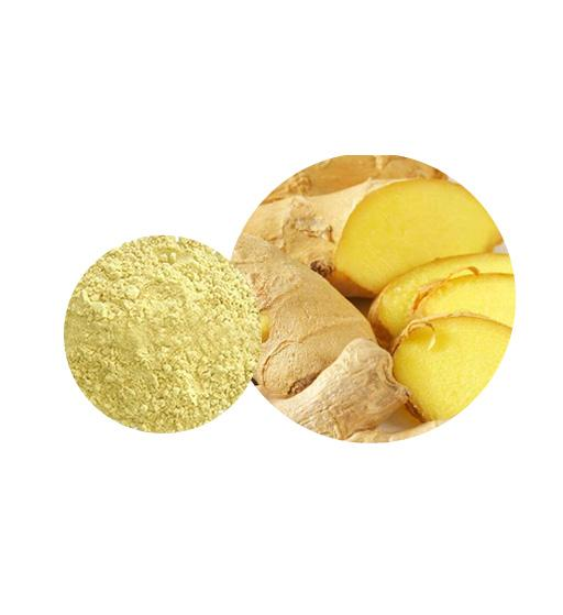 Organic Ginger Powder Bulk Vegetable Powder Manufacturer and Supplier - Laybio Natural
