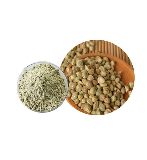Organic Hemp Protein Bulk Organic Plant Protein Manufacturer and Supplier - Laybio Natural