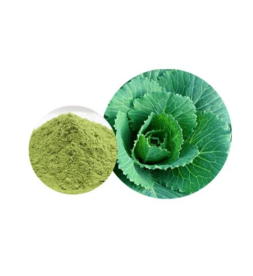Organic Kale Powder Bulk Vegetable Powder Manufacturer and Supplier - Laybio Natural