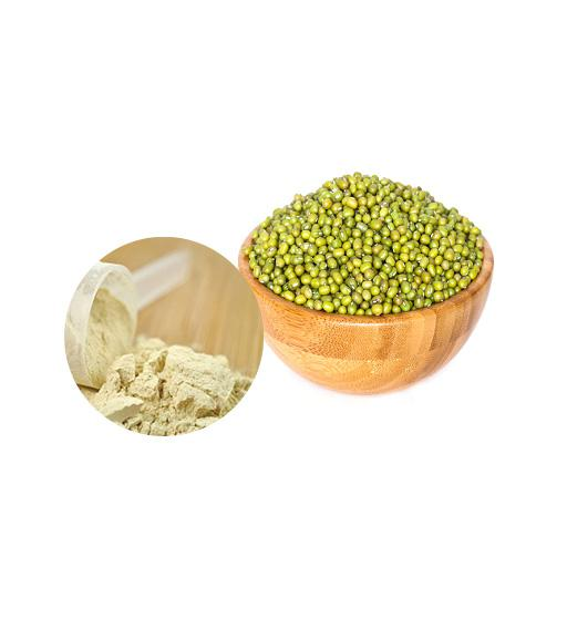 Organic Mung Bean Protein  Bulk Organic Plant Protein Manufacturer and Supplier - Laybio Natural