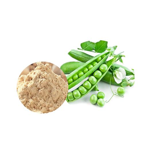 Organic Pea Protein Bulk Organic Plant Protein Manufacturer and Supplier - Laybio Natural