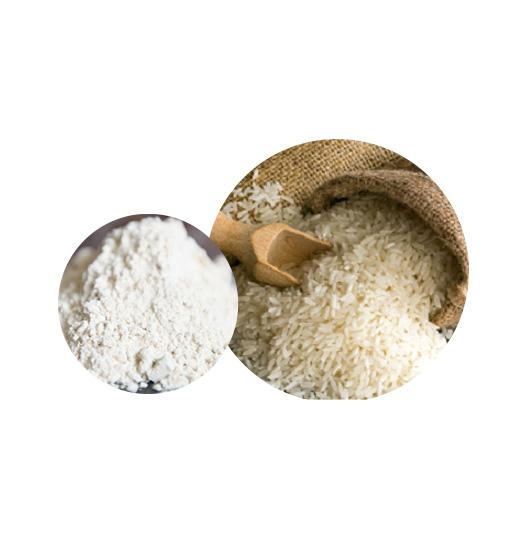 Organic Rice Protein Bulk Organic Plant Protein Manufacturer and Supplier - Laybio Natural