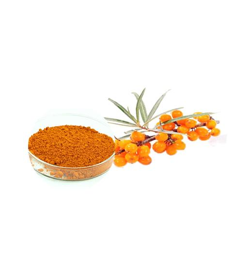 Organic Seabuckthorn Juice Powder Supplier Bulk Fruit Juice Powder Manufacturer and Supplier Laybio Natural