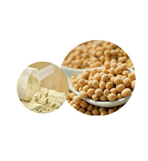 Organic Soy Protein Bulk Organic Plant Protein Manufacturer and Supplier - Laybio Natural