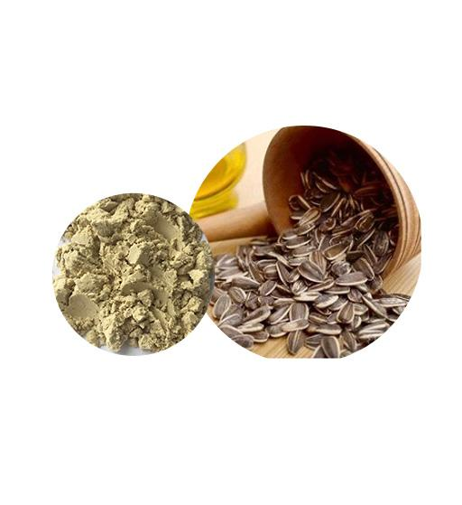 Organic Sunflower Seed Protein Bulk Organic Plant Protein Manufacturer and Supplier - Laybio Natural