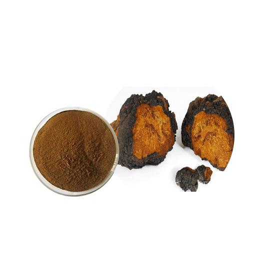Organic Chaga Mushroom Extract Bulk Mushroom Extract Manufacturer and Supplier - Laybio Natural