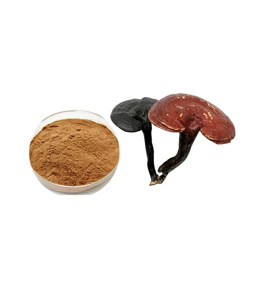 Organic Ganoderma Lucidum Extract Bulk Mushroom Extract Manufacturer and Supplier - Laybio Natural