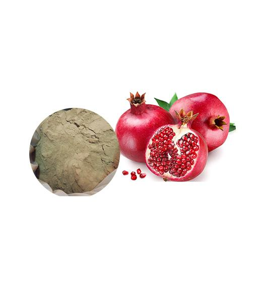 Pomegranate Extract Bulk Herbal Extracts Manufacturer and Supplier - Laybio Natural