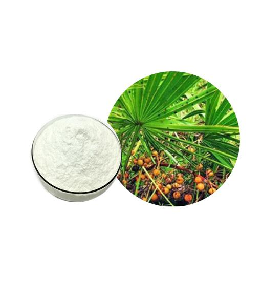 Saw Palmetto Extract Bulk Herbal Extracts Manufacturer and Supplier - Laybio Natural