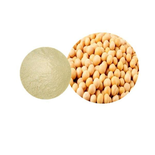 Soybean Powder Bulk Herbal Extracts Manufacturer and Supplier - Laybio Natural