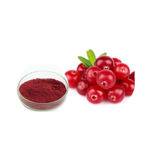 Cranberry Powder Bulk Herbal Extracts Manufacturer and Supplier - Laybio Natural