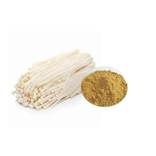 Enoki Mushroom Extract Bulk Mushroom Extract Manufacturer and Supplier - Laybio Natural