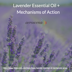 lavender oil mechanisms of action