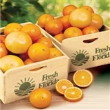 Field Crate Navel & Ruby Red Grapefruit