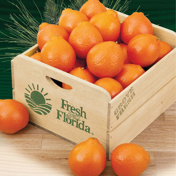 HoneyBells Field Crate