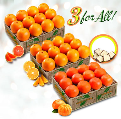 3 for all - red navels, navels and mandarin oranges