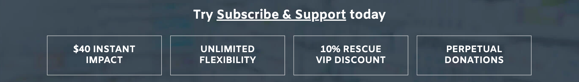 Subsribe & Support