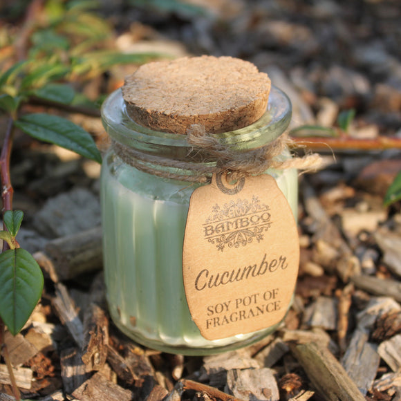 Gifts > Gifts For Her > 2x Cucumber Soy Pot of Fragrance Candles