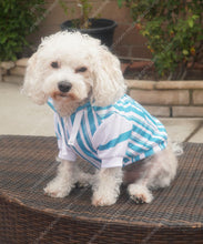 Load image into Gallery viewer, Dapper Dan Blue Zip Up Dog Athletic Hoodie