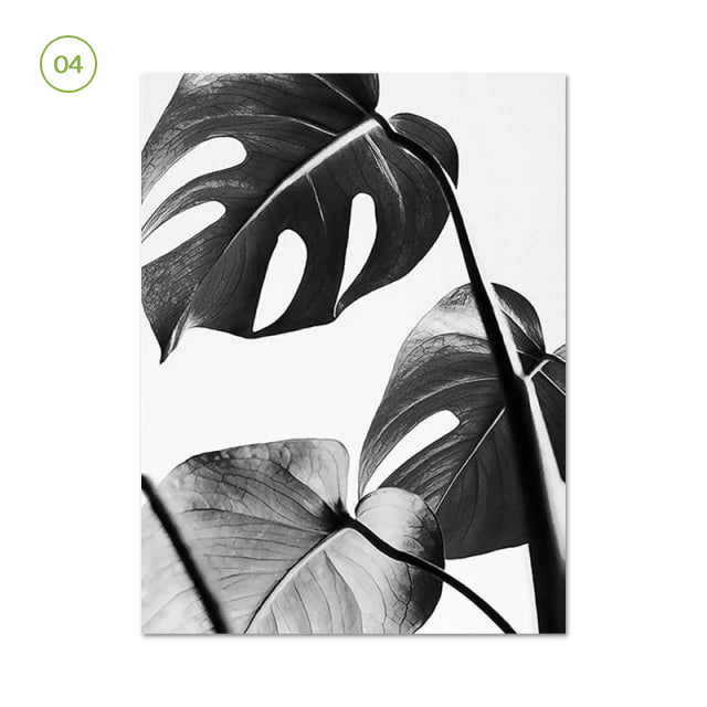 Black White Minimalist Botanic Wall Art Fine Art Canvas Prints Simple Nature Pictures For Living Room Dining Room Inspirational Home Office Wall Decor