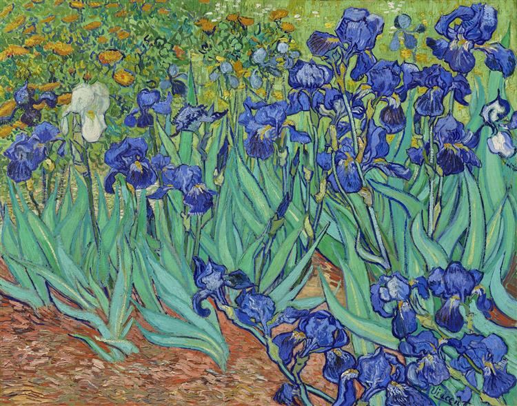 Famous Artists Vincent Van Gogh Irises Poster Fine Art Canvas Print Classic Colorful Post-Impressionism Landscape Floral Wall Art Decor (1 (3)