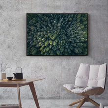 Load image into Gallery viewer, Forest View From Above Green Trees Wilderness Wall Art Fine Art Canvas Prints Modern Abstract Beauty Of Nature Pictures For Home Office Wall Art Decor