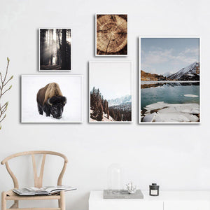 Forest Mountain Winter Wilderness Landscape Wall Art Far North Icy Lake Bison Log Cabin Travel Dreams Scandinavian Style Fine Art Canvas Prints