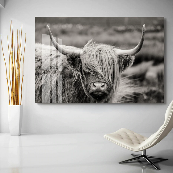 Scottish Highland Cattle Black And White Animal Wall Art Fine Art Canvas Giclee Print Modern Pictures For Office Interior Living Room Dining Room Home Decor