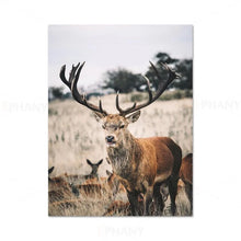 Load image into Gallery viewer, Wilderness Mountain Landscape Nordic Wall Art Wild Animals Forest Deer Rustic Wood Tree Rings Fine Art Canvas Prints Scandinavian Style Home Interior Decor