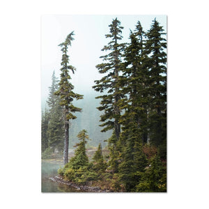 Misty Mountain Lake Wilderness Tranquil Landscape Wall Art Fine Art Canvas Prints Pictures Of Calm For Office Home Living Room Modern Home Decor