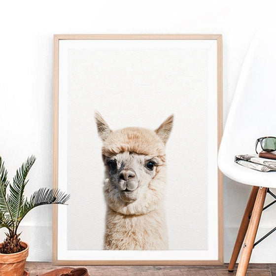Cute Baby Alpaca Portrait Wall Art Fine Art Canvas Print Nordic Style Minimalist Cute Animals Posters For Nursery Room Kids Room Pictures For Modern Home Decor
