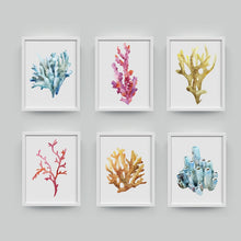 Load image into Gallery viewer, Beautiful Colorful Coral Specimens Subtle Abstract Wall Art Marine Life Fine Art Canvas Prints Paintings For Bathroom Nordic Style Interior Decor