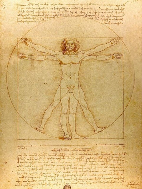 Classic Painting Vitruvian Man, Study of Proportions by Leonardo da Vinci Fine Art Canvas Print Famous Paintings Wall Art Home Office Decor
