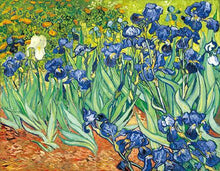 Load image into Gallery viewer, Famous Artists Vincent Van Gogh Irises Poster Fine Art Canvas Print Classic Colorful Post-Impressionism Landscape Floral Wall Art Decor
