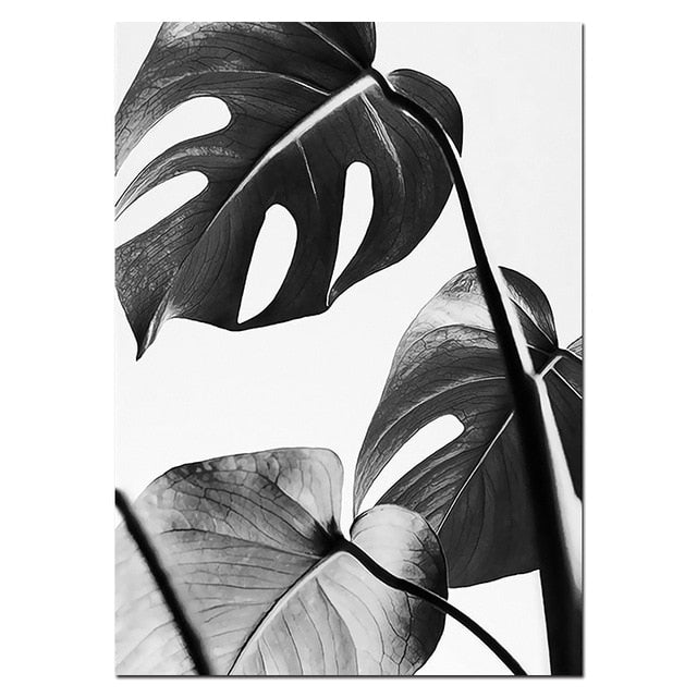 Stylish Black White Tropical Palm Leaves Wall Art Minimalist Today Quotation Nordicwallart Com Download all photos and use them even for commercial projects. stylish black white tropical palm leaves wall art minimalist today quotation fine art canvas prints nordic style modern interiors home decor