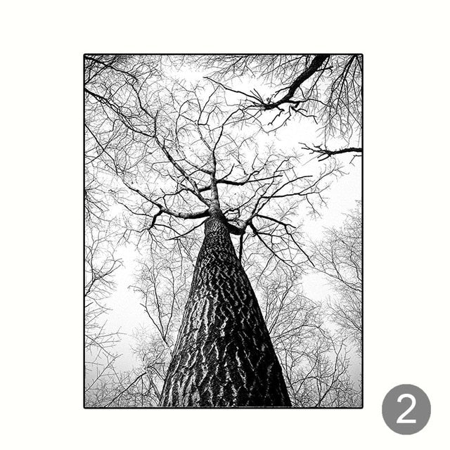 Black And White Scandinavian Winter Wall Art Woodland Nature Deer Silver Birch Forest Fine Art Canvas Prints For Living Room Dining Room Decor
