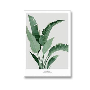 Tropical Strelitzia Flora Botanical Study Fine Art Canvas Prints Nordic Wall Art Nature Paintings For Living Room Dining Room Modern Home Decor