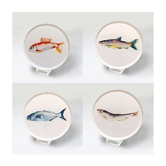Coasters Fish - CS4