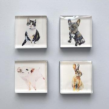 Magnets Animals - MG1