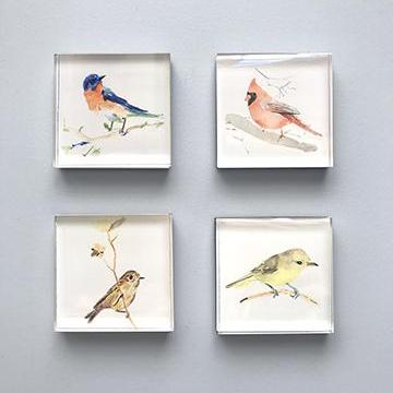 Magnets Birds - MG2