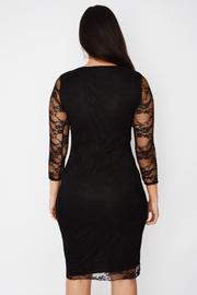 Lace Panelled Fitted Midi Dress