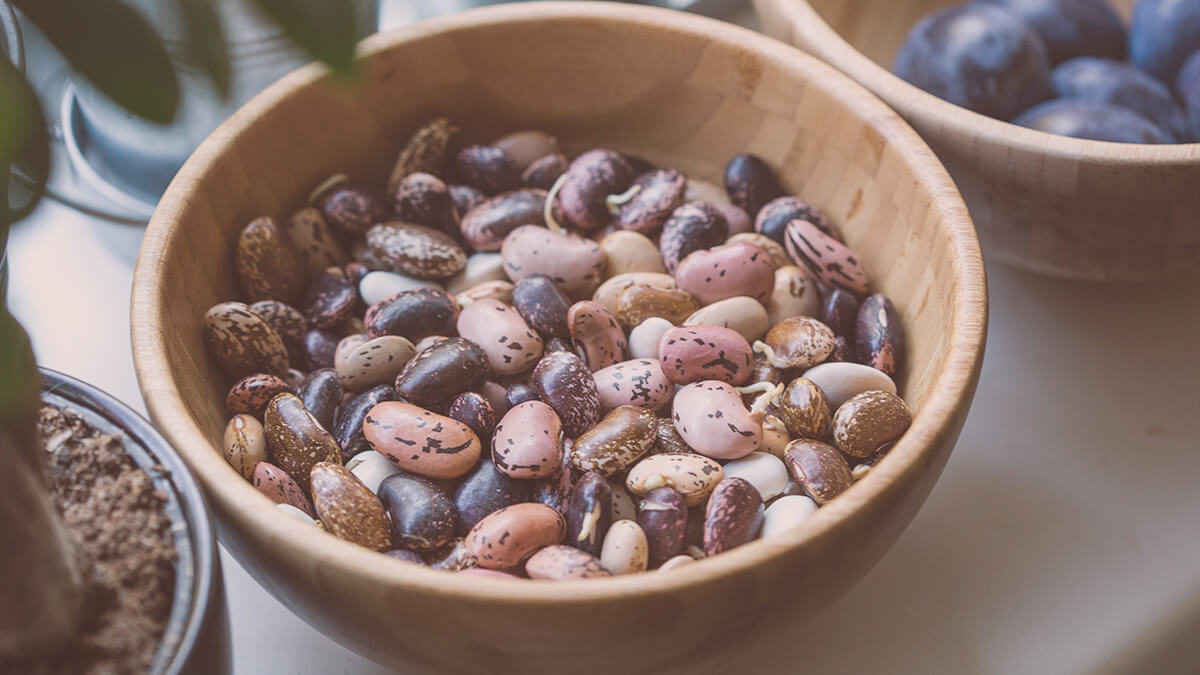 Beans and legumes and a good source of fiber