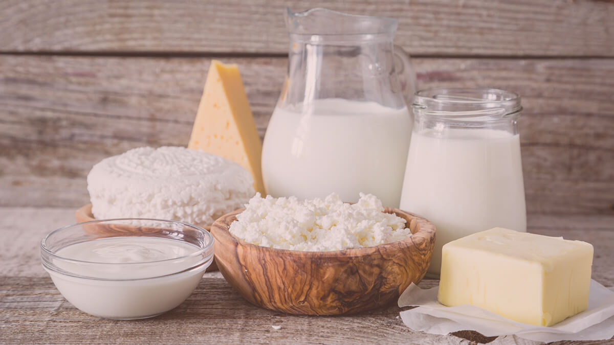 Some dairy products interfere with the effect of probiotics