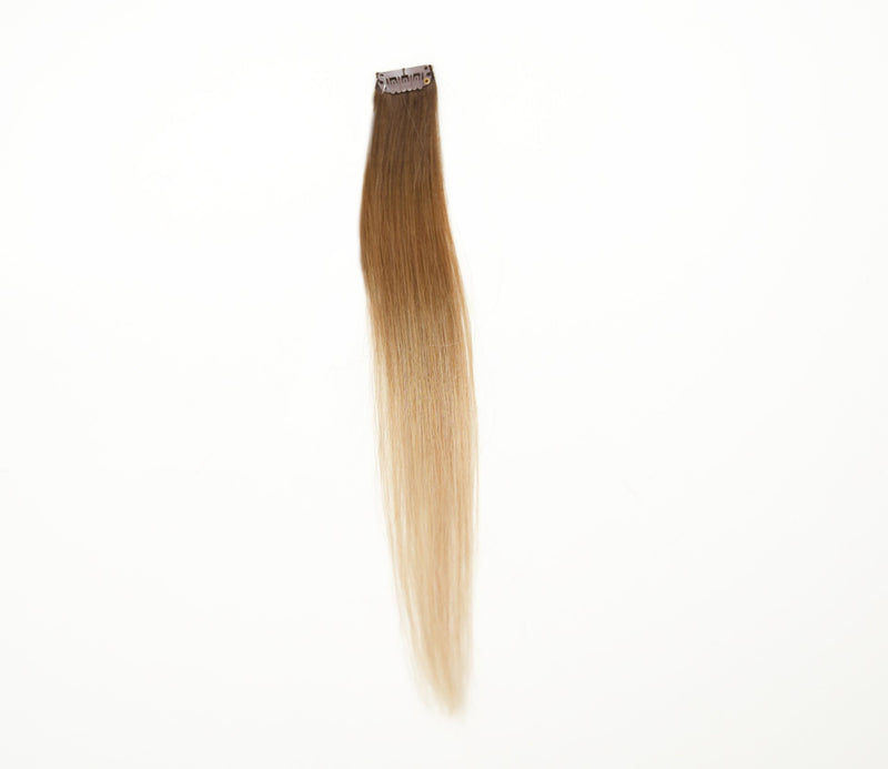 dirty blonde ombre 2/4/12